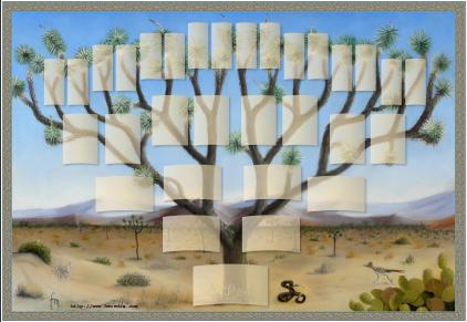 Arbre illustré 5 générations Arbre de Josué