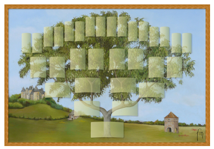 Arbre illustré 5 générations Noyer