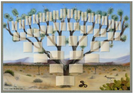 Arbre illustré 6 générations Arbre de Josué