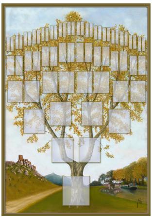 Arbre illustré 6 générations Platane