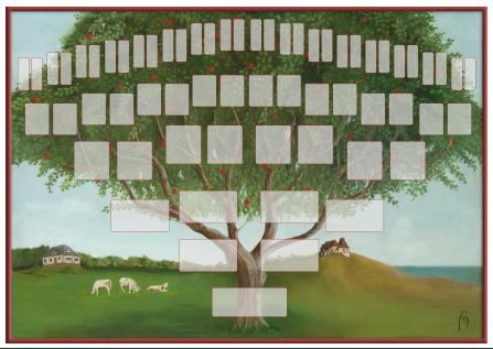 Arbre illustré 6 générations Pommier